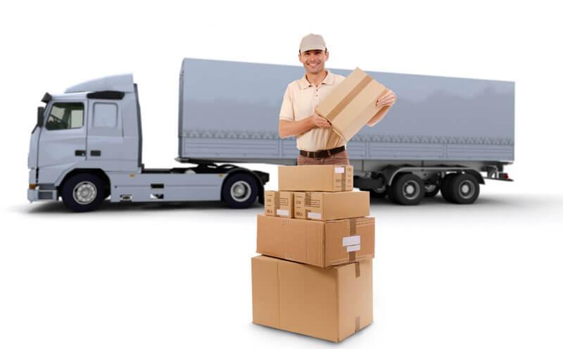 express-shipping-hcg